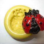 ladybug-2.jpg