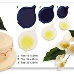 arum calla lily