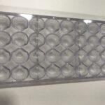 molde conchas – 1210 – 18€